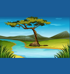 Scene with river through the field vector