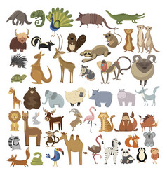 set animals collection cartoon animals vector image