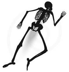 skeleton silhouette in prone pose vector image