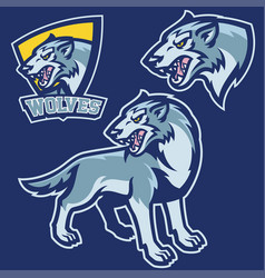 wolf in sport mascot style vector image