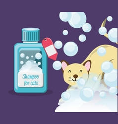 Cat with shampoo bottle vector