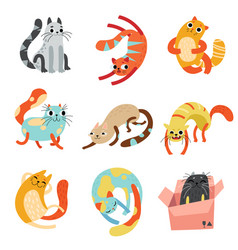 collection of cute funny cats in different poses vector image