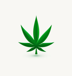 hemp leaf marijuana symbol cannabis herb vector image