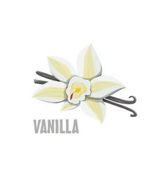 Logo vanilla farm design vector