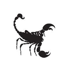 Scorpio black silhouette scorpio zodiac sign vector