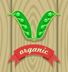 pea pod on wooden boards with red ribbon vector image vector image
