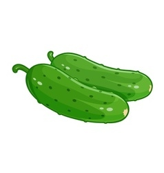 Couple cucumber vector image vector image