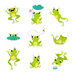 cute green frog smiling jumping and croaking vector image
