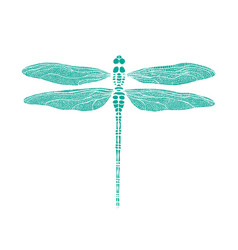 dragonfly dragonfly in one color under stencil vector image