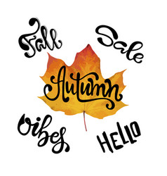 fall calligraphy set big set of autumn quotes vector image