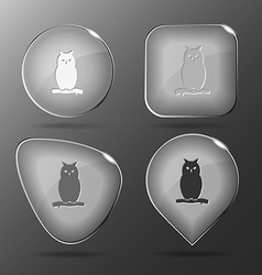 Owl Glass buttons vector
