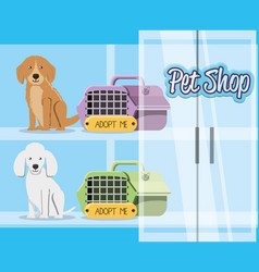 Pet shop accessories icons vector