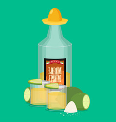 tequila bottle salt lemon flat vector image