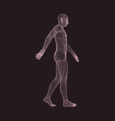 Walking man 3d human body model geometric design vector