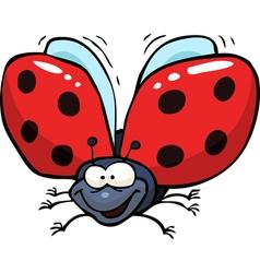 cartoon flying ladybug vector image vector image