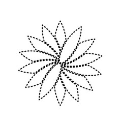 flower sign black dashed icon on white vector image