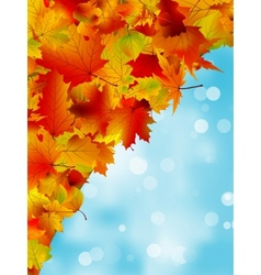 Autumn leaves on blue sky EPS 8 vector