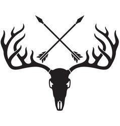deer skull with horns and crossed arrows vector image