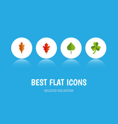 Flat icon foliage set of leaf linden hickory and vector