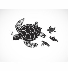 mother turtle and baby turtle on a white vector image