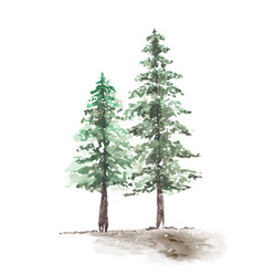 Snowy winter couple pine trees hand-painted vector