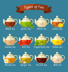 types tea set glass kettles with different vector image
