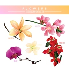 Flowers Editable Gradient vector image