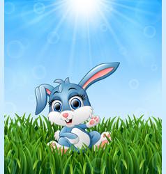Cartoon rabbit sitting in the grass on a backgroun vector