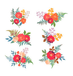 floral set collection with red orange beautiful vector image