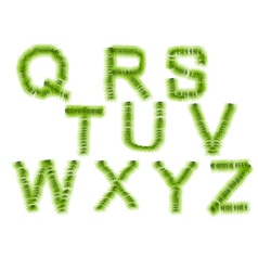grass letters Q R S T U V W X Y Z vector image