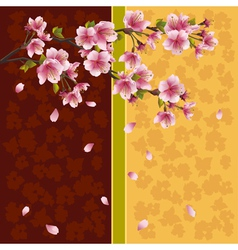 Oriental background sakura Japanese cherry tree vector