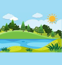 pine trees and the lake at day time vector image