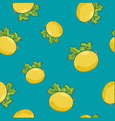 seamless pattern melon on azure background vector image vector image