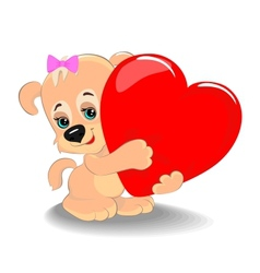 Puppy with heart vector image vector image
