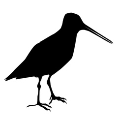 silhouette of snipe vector image vector image