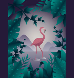 pink flamingo on the water vector image