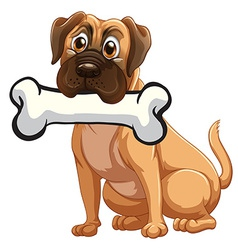 a dog with a bone vector image