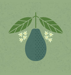 Avocado with leaves and flowers vector