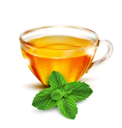 Cup of tea with mint leaves vector