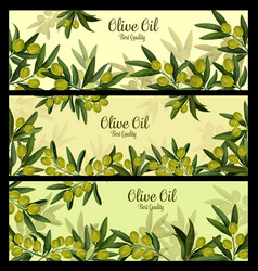 Green olive branch banner for natural oil label vector