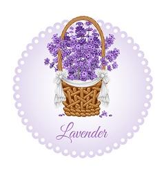 Lavenders basket vector