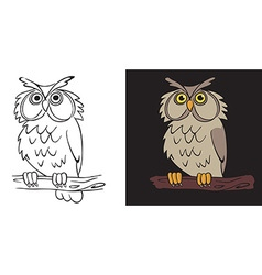 Night owl vector