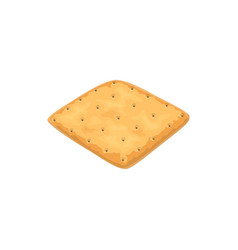 Plain oat or wheat square cracker vector