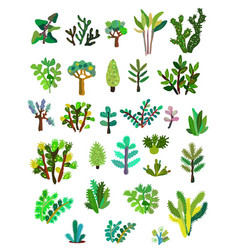 Plants collections with leaves and flowers graphic vector