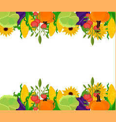 vegetables banner template background vector image