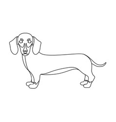 Dachshund single icon in outline styledachshund vector