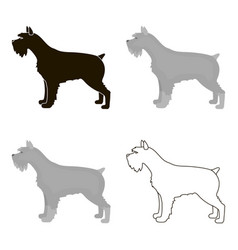 schnauzer icon in cartoon style for web vector image vector image