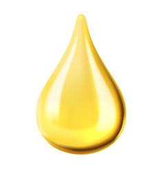 transparent oil drop vector image