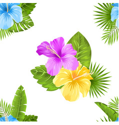 seamless floral pattern with hibiscus flowers and vector image vector image