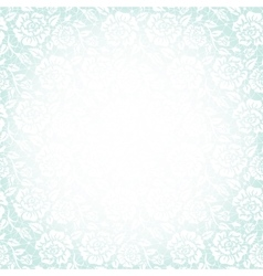 white lace vector image vector image